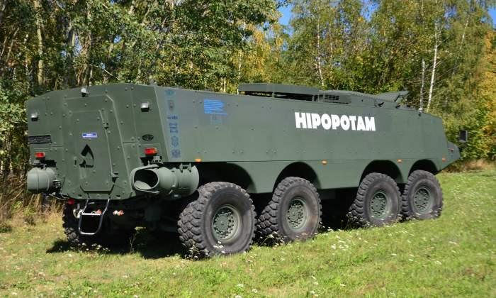 AMZ-HIPPO-4