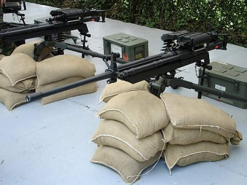 The THeMIS ADDER can be armed with a CIS 50MG machine gun. Image courtesy of Dave1185 at en.wikipedia.