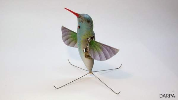 Hummingbird unmanned aerial vehicle