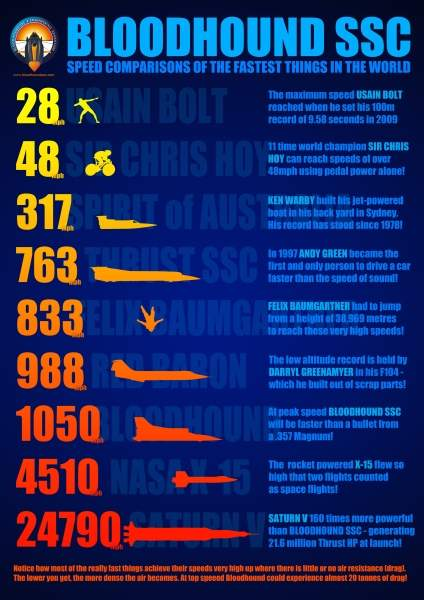 Bloodhound infographic