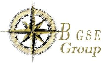 B GSE Group