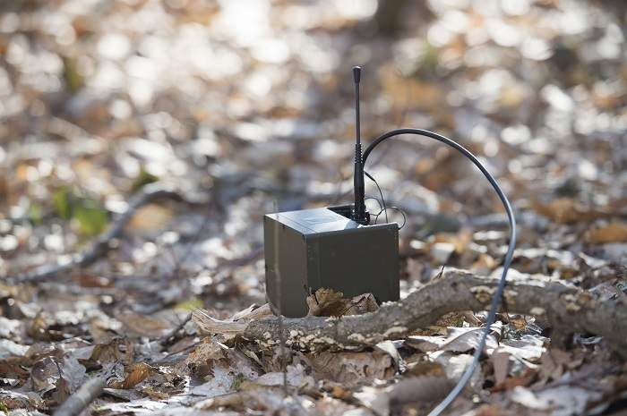 Exensor – wireless gateway large UGS network