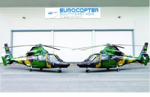 Dauphin helicopters