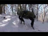 BigDog Alphadog Video